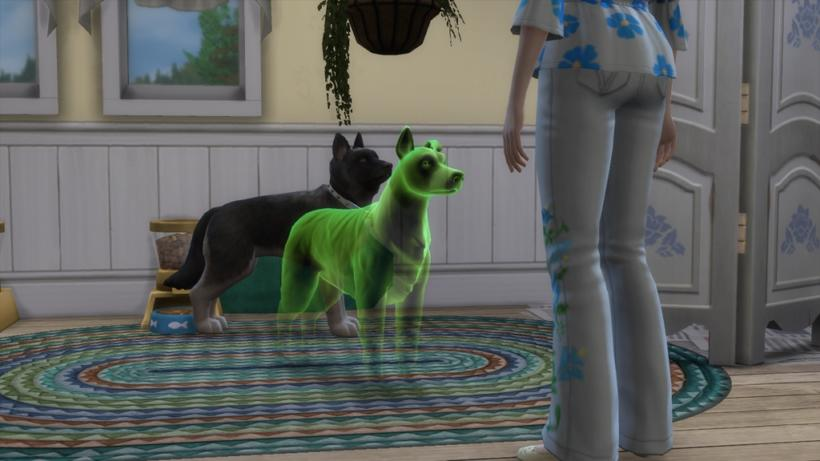 Como adotar um animal fantasma no the sims 4